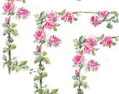 Beautiful Vintage Chic Shabby Pink Roses Decals De-Ro-15