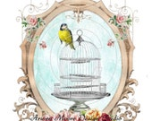 Vintage Shabby Style Lovely Birds and Pink Rose Frame Decals De-Bd-37