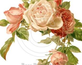 Shabby Vintage Style Pink/Peach Roses waterslide water slide Decals De-Ro-63