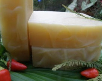 Spiced Soap - Cajun Spice Soap - All Natural Soap - Festive Soap - Organic Ingredients  - Special Occasion Soap