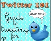 SALE- The Twitter Success Guide (50 percent off)