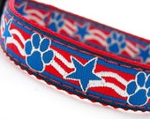 Paws and Stripes Dog Collar 5/8 inch wide