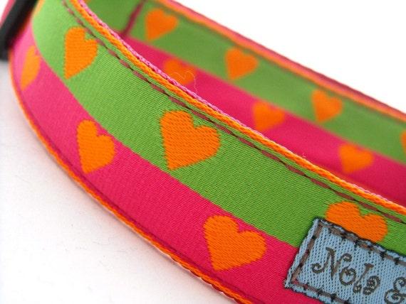 Puppy Love Stripe Dog Collar 1 inch wide