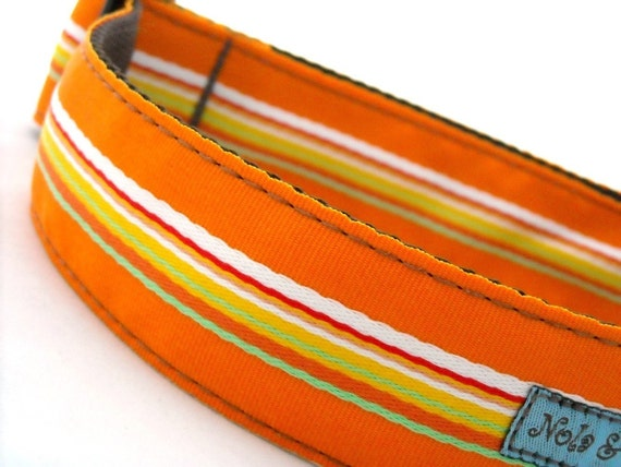 Leon Orange Dog Collar 1.5 inches wide