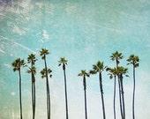 California Photo, Palm Tree, fpoe, Wall Decor, Travel Photography, Summer, Blue Sky, Nature Photography, Santa Monica - Summer Palm Trees