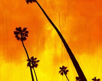 California Photography, Palm Trees, Summer, Los Angeles, Orange, Yellow, Pop, Hot, Wall Decor, Travel Photography - Orange Palm Trees