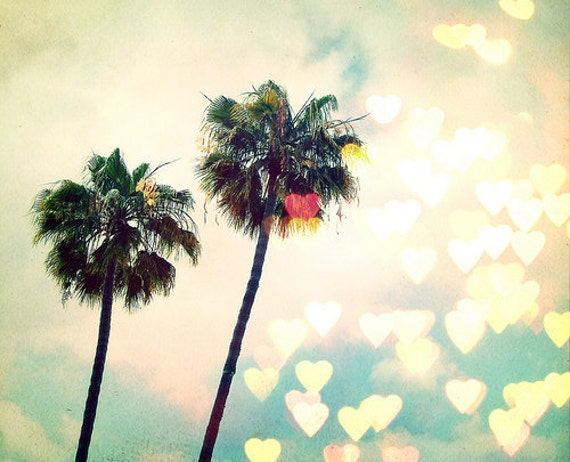 BLACK FRIDAY California Photo, Los Angeles, Palm Tree, fpoe, Nature, Bokeh, Hearts, Love, Wall Decor, Travel Photo -Palm Tree Bokeh (8x10)