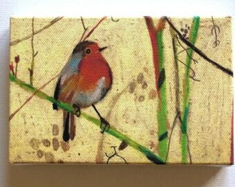 Bird / Tiny canvas print / Robin- print of robin red breast- blue tit