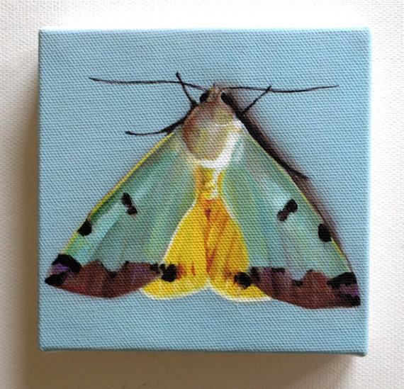 My little butterfly / Tiny canvas print- animal small art painting-Fine Art Print-Wall hanging