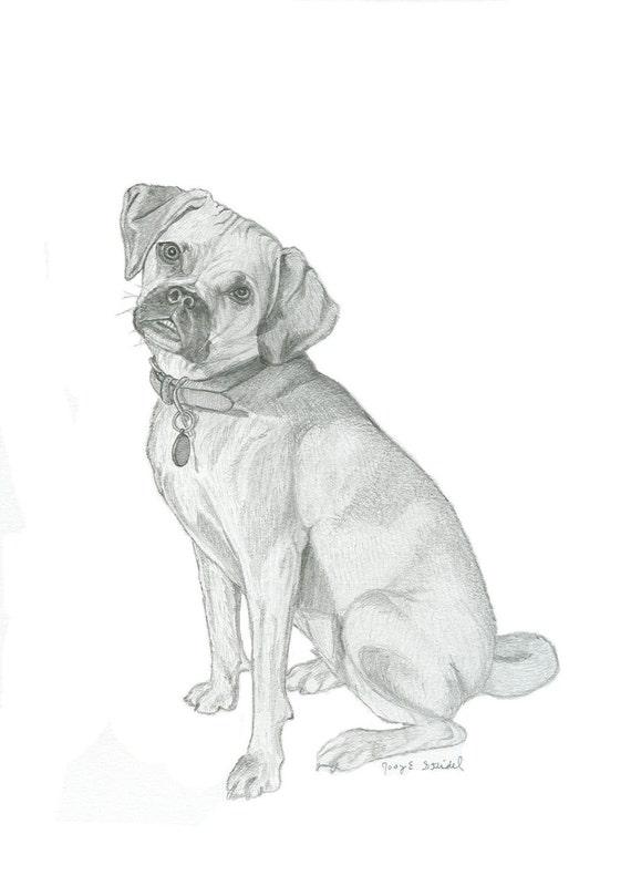 Custom Pet Pencil Portrait - One Subject - 5 x 7