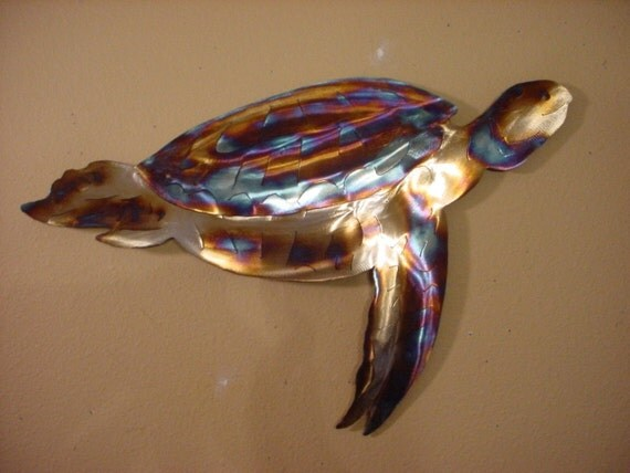 Sea Turtle Hawksbill Green Loggerhead Turtles Steel Ocean