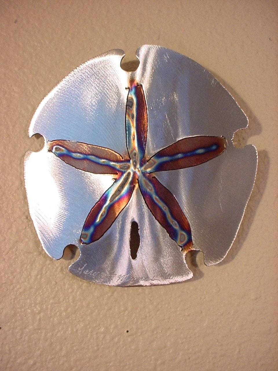 Sand Dollar Sanddollar Steel Wall Art Metal Ocean Beach House Coastal Cottage Home Decor Beach Combing