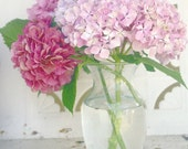 RESERVED For KIMBERLY - Gorgeous Pink Hydrangea Bouquet - 8 x 10 Fine Art Photography Print