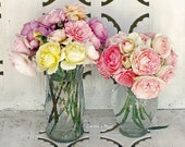 Light Pink, Yellow, Orange, Lavender Mixed English Rose Bouquets - 8 x 10 Fine Art Photography Print