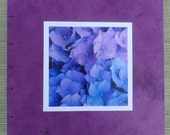Custom Hydrangea Photo Albums for juliegraham1002