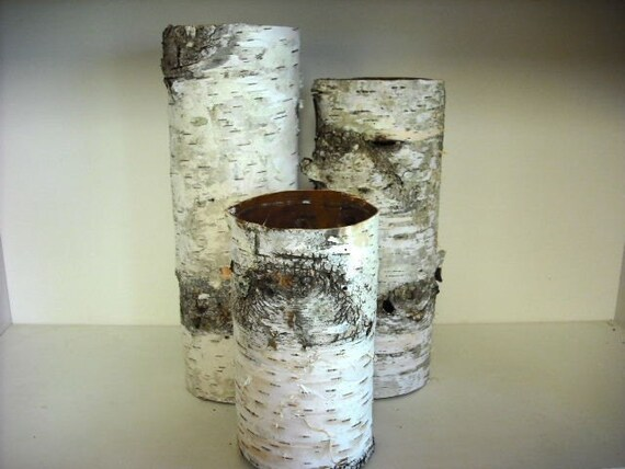 Handmade Set Of 3 Birch Bark Covered Vases By Nhwoodscreations