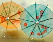 parasols on snowy days ... 8x10 fine art photograph