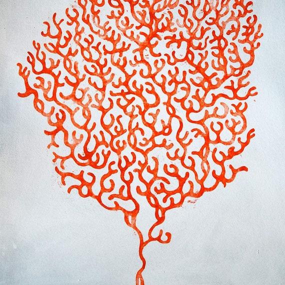 Coral (original)