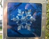 Cyanotype Snowflake Ornament in Vintage Slide Binder