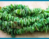 Shell Chip Beads - GM310