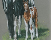 Paint Mare and Colt Portrait, Horse Print by B Bruckner