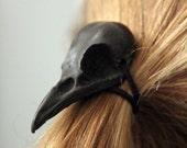 Black Raven Skull Hair Tie - Pony Tail Holder -Bird Crow