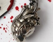Anatomical Heart Necklace  in Solid White Bronze 154