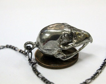 Hawk Skull Necklace Silver Hawk Skull Pendant Necklace Silver Kestrel Falcon Skull 103