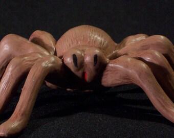 Little Brown Spider