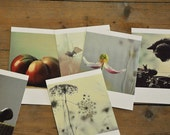 Set of 15 postcards