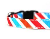 Fruit Stripe 3/8 Inch Dog Collar XS