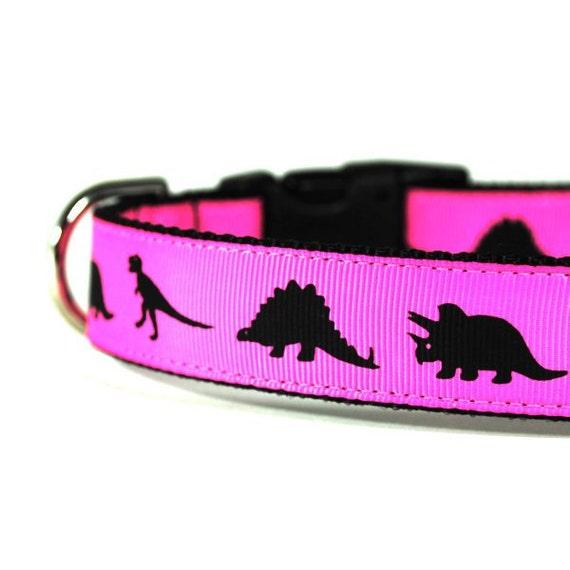1 Inch Dog Collar Jurassic Rock MD