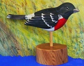 Grosbeak - Rose Breasted - Songbird - Hand Carved - Hand Painted - by Will Kay Studios on Etsy