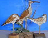 Shorebird Decoys - Sandpipers - Hand Carved - Hand Painted - Yellow Legs - Whimbrel - Wildlife - by Will Kay Studios