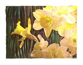 Daffodils  - Handmade Print - Pencil - Watercolor - Yellow by Will Kay Studios on Etsy