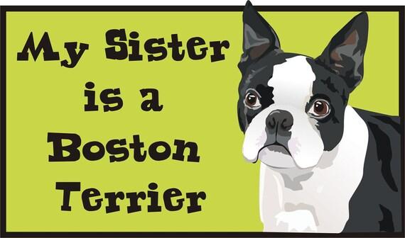 Boston Terrier Bodysuit/ Baby Clothes/Baby Boys' Bodysuit/Baby Girls' Bodysuit/Baby Shower Gift/Toddler tee shirt