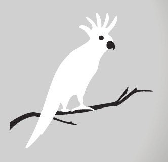 Parrot Wall Sticker - Polly the Parrot - vinyl window sticker or wall decal