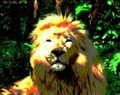 Straight On Leo
