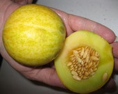 Heirloom Green Machine Icecream Muskmelon Seeds for your garden