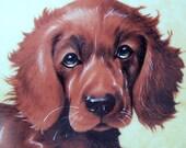 Irish Setter Plate Puppy Collectible Cute Vintage Quail Porcelain