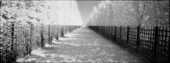 Mayberry PHOTOGRAPH Print - Versailles France
