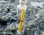 Message in a Bottle, Original Poem
