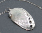 """Sterling Silver Gilded Seashell Necklace - """"Siren's Song"""" Shell Necklace, White Seashell"""
