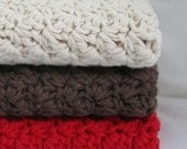 Shipping FREE - Set of  3 Crocheted 9X9 Cotton Dishcloths - Ecru/Brown/Red