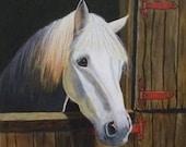 Molly - Horse - Unframed
