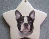 Boston Terrier Dog star ornament, free personalizing 22k gold by Nicole