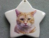 Orange Tabby cat star ornament, free personalizing 22k gold by Nicole