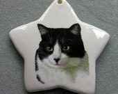 Tuxedo cat star ornament, free personalizing 22k gold by Nicole