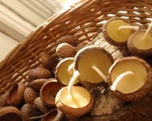 acorn cap candles (20) -- woodland /the littlest lights/ floating candles