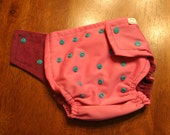 One Size  Pocket Artsy Fartsy Cloth Diapers - Pink & Magenta with Teal Snaps